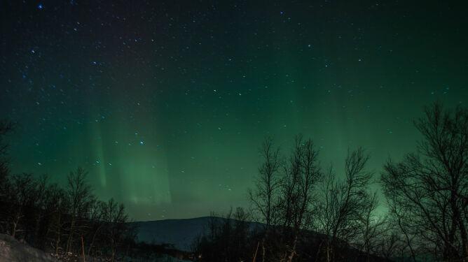 Dzisiejszej nocy na polskim niebie może pojawić się zorza polarna