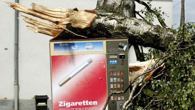 Burze z gradem demolują niemieckie miasta i lasy