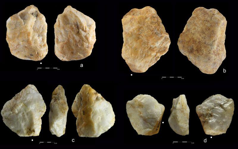 Niektóre z odkrytych narzędzi (2021 Masojć et al./Uniwersytet Wrocławski)
