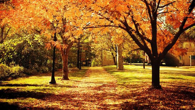 Równonoc jesienna 2020. Kiedy zaczyna się astronomiczna jesień?