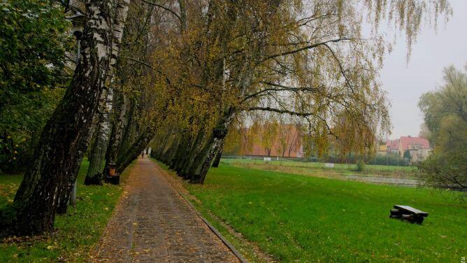 Prognoza pogody na dziś: <br />chłodne powitanie jesieni
